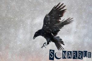 Soñar con cuervos volando