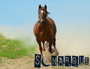 en un sueño de un caballo corriendo qué significa