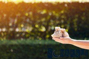 Soñar con un préstamo