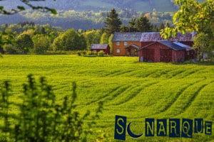 Soñar con granja