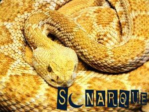 soñando con una serpiente amarilla