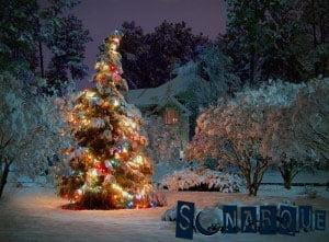 Soñando con un árbol de Navidad