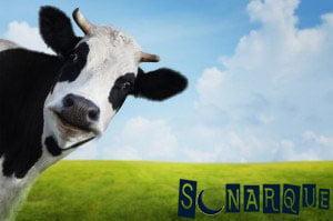 Soñando con una vaca