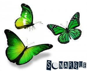 Soñando con una mariposa verde