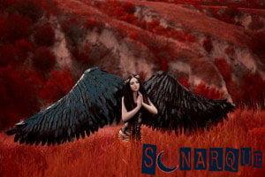 Soñando con el ángel de la muerte