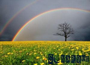 Sueña con arcoíris en el cielo