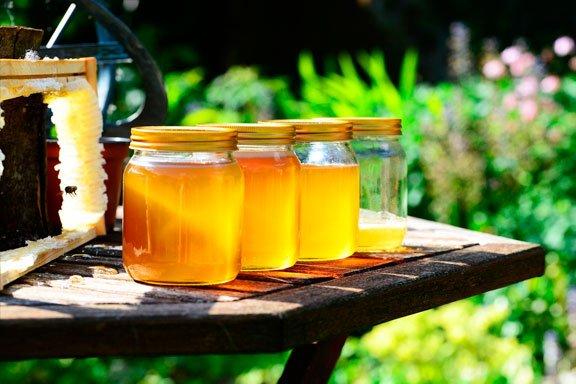 Los sueños de panal de miel