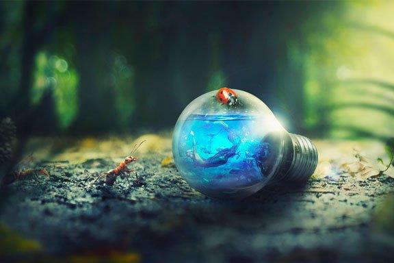 Soñar que estás en el mundo de las hormigas