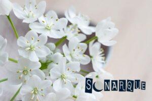 soñar con flores marchitas