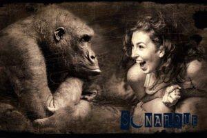 soñar con gorilas negros