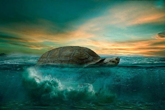 soñar con una gran tortuga